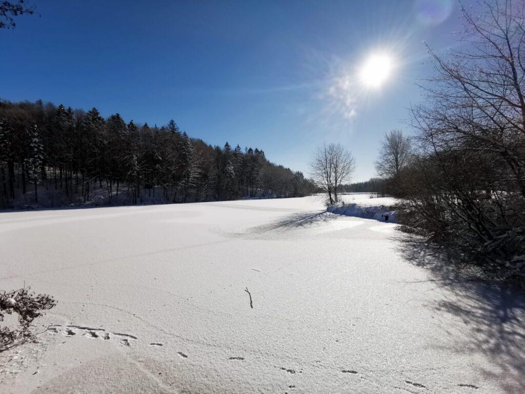 Sonnenschein im Winter am Stausee